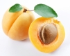 Apricot fights cancer