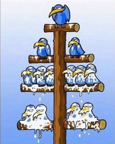 Corporate America -- the pecking order