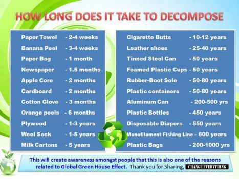 How long it takes foods and products to decompose