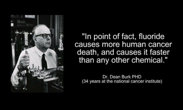 Fluoride causes cancer