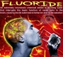 Fluoride--what it does