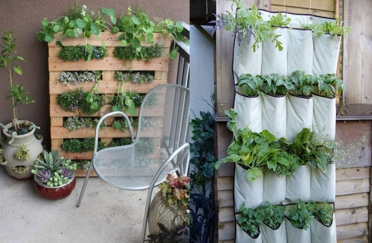 How to create a garden inside a house or apartment