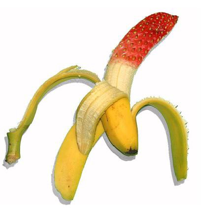 GMO banana offers hope for disease and pest resistance ...