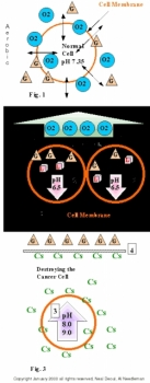 How cancer cells form--pH, Alkalinity of cancer cells
