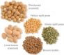 List of legumes--cancer fighting food