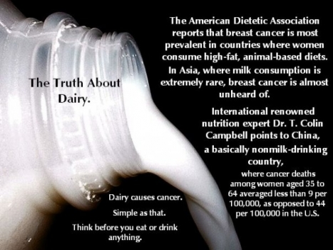 Does Dairy Cause or Prevent Cancer? An Objective Look