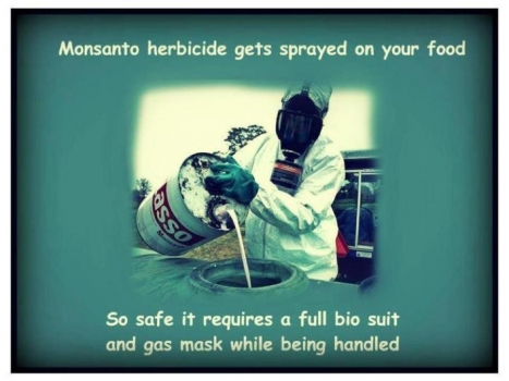 Monsanto herbicides can kill a person but is on our food