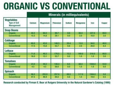 Nutritional differences between organic vs conventional ...