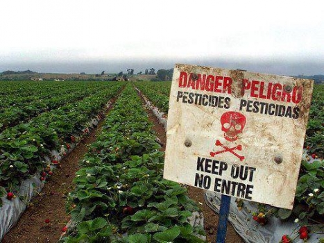 Pesticides--if we don't drink it, why put it in our bodies?