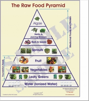 Raw food cacer diet