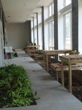 Interior Of The Sustainable Living Center